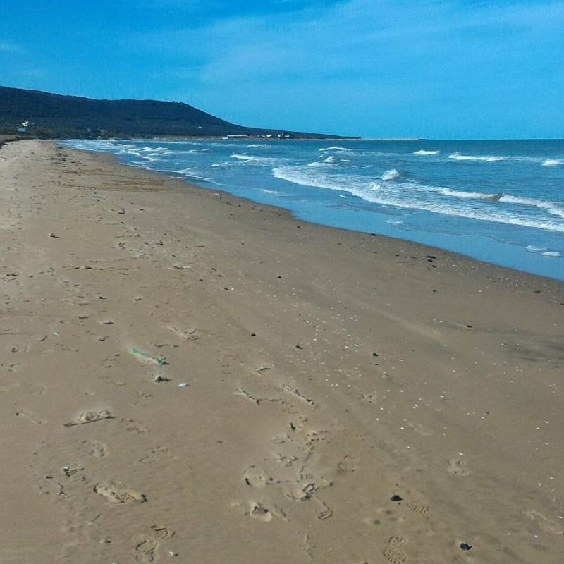 VidaGaia-spiaggia-isola-di-varano